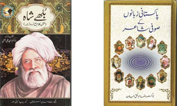 literary notes  pakistani languages  sufi poetry and